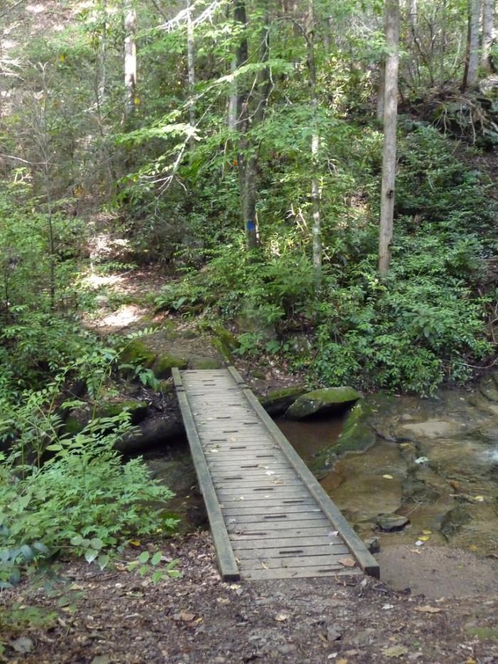 6. Jones Gap Trail, Cleveland