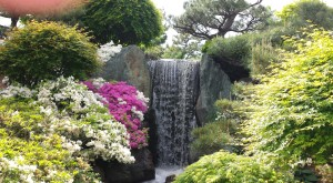 Here are the 11 Most Beautiful Gardens You Will Ever See in Missouri