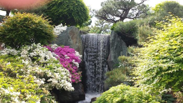 4. Missouri Botanical Gardens, St. Louis