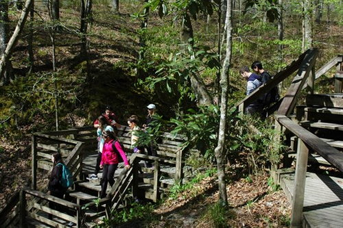 4. The Clark Creek Natural Area Trails