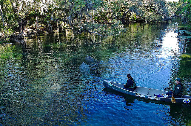 These 15 Camping Spots In Florida Are An Absolute Must See