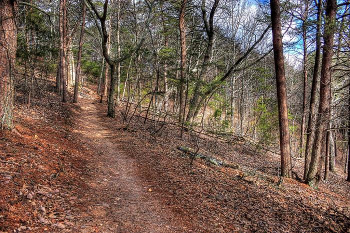 2. Sawnee Mountain- Indian Seats Trail