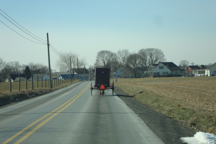 10) Pulling out onto the road behind a horse and buggy. (Because we know we'll be there awhile.)