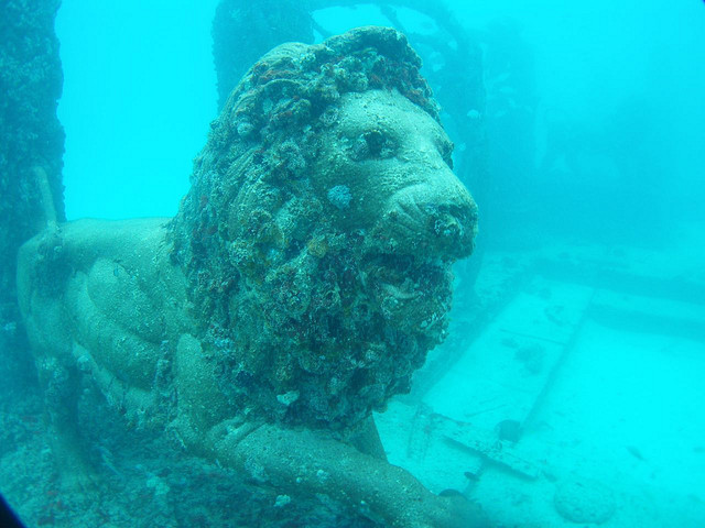 9. Explore an underwater cemetery that doubles as an artificial reef.