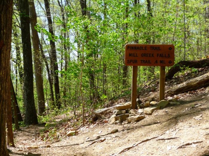 11. Pinnacle Mountain Trail, Pickens