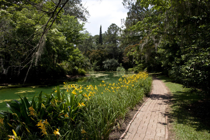 7. Alfred B. Maclay Gardens State Park