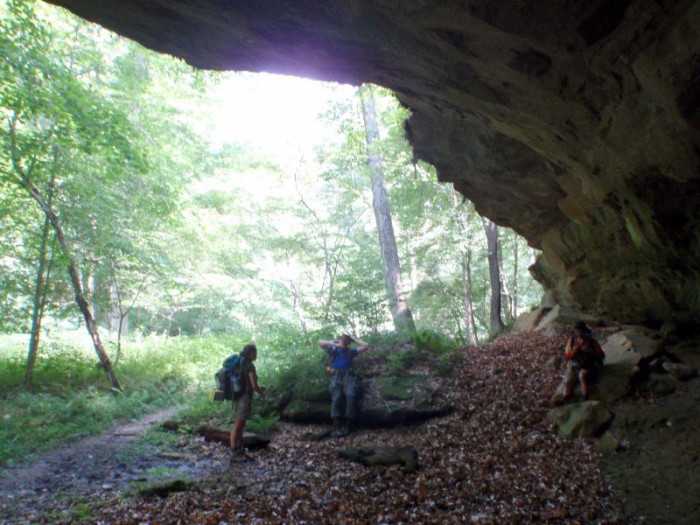 5. North and South Zaleski Loop (Zaleski State Forest)