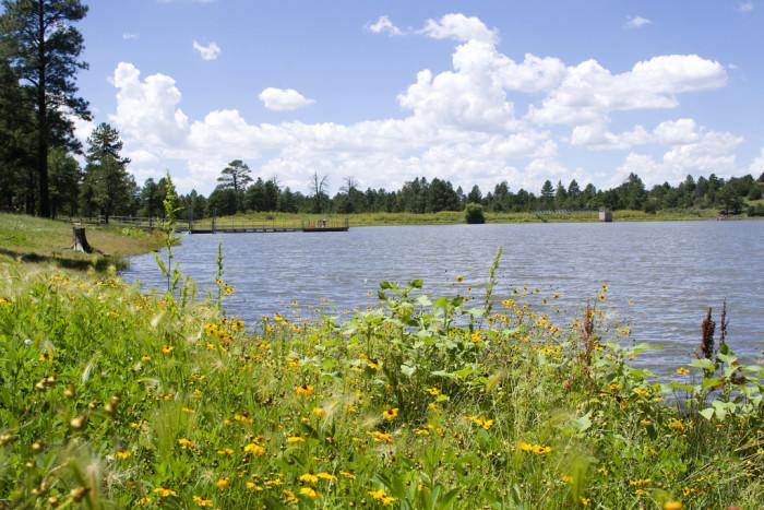 5. Kaibab Lake Campground