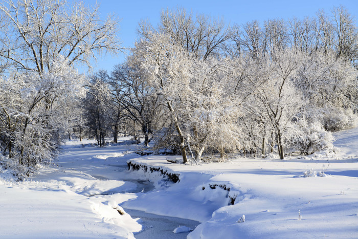 4. Admire the untouched beauty of this winter scene in Linn County.