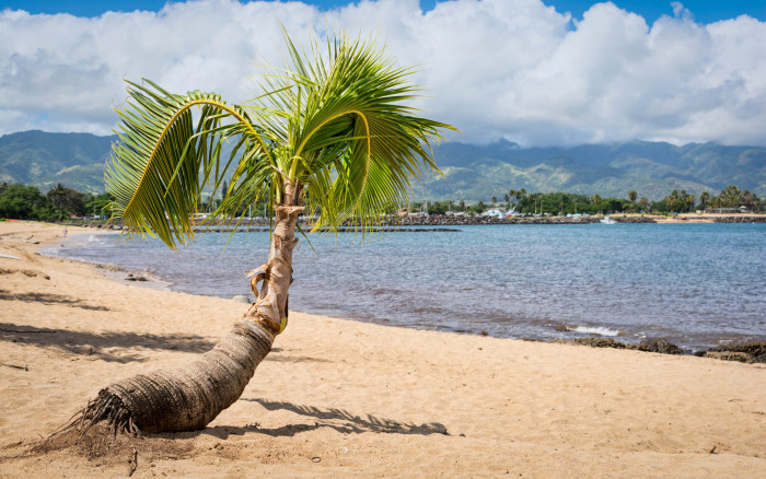 5) Hawaii is absolutely breathtaking, with diverse scenery. Beaches, Mountains, and Volcanoes, oh my!