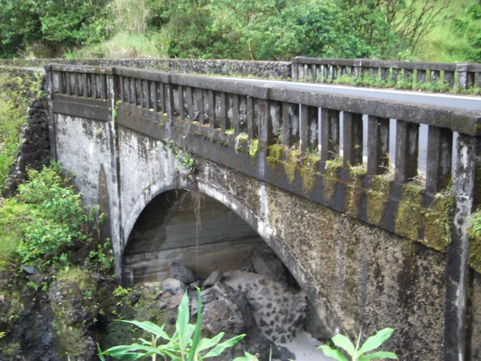 5) The Hana Bridge appears to have been reclaimed by nature.
