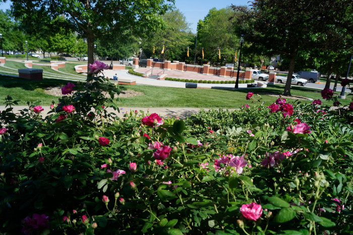 5. Mizzou Botanic Gardens, University of Missouri, Columbia