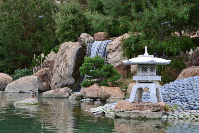 7. Transport yourself to another place at the Japanese Friendship Garden in downtown Phoenix.