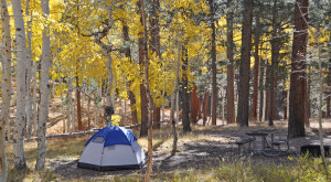 These 8 Amazing Camping Spots In Arizona Are An Absolute Must See