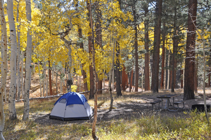 8. North Rim Campground