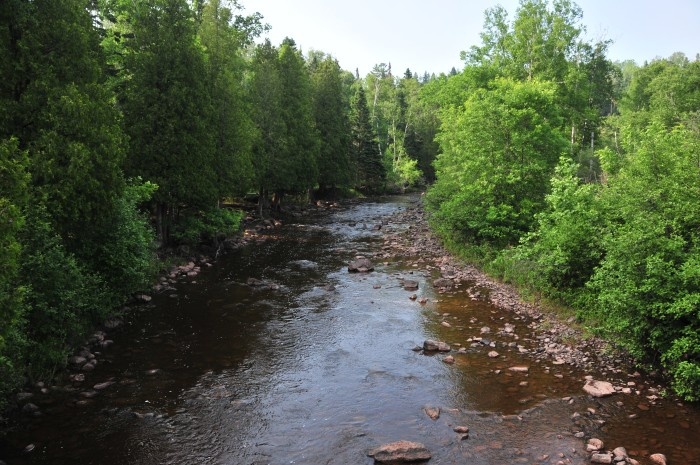 4. The Gooseberry River is the perfect place to cool off, whether you're below the falls or further down.