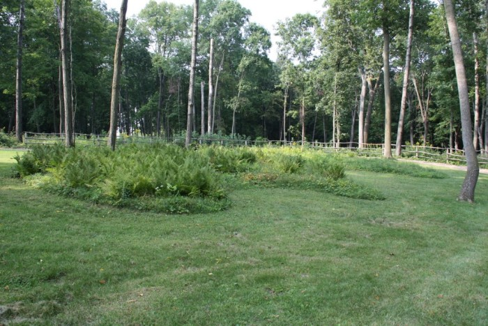 5. The largest concentration of Effigy Mounds in the U.S.
