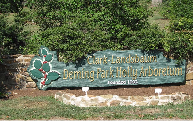 5. Deming Park Holly Arboretum