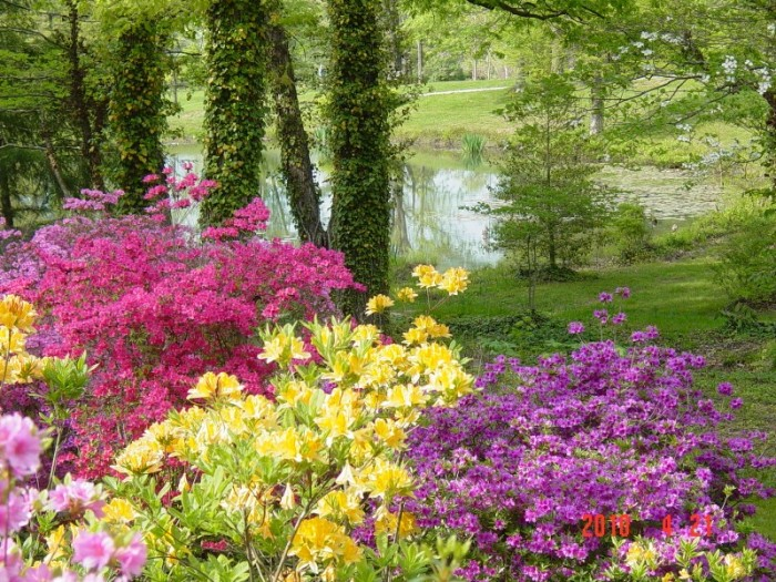 Here Are The 11 Most Beautiful Gardens You Will Ever See