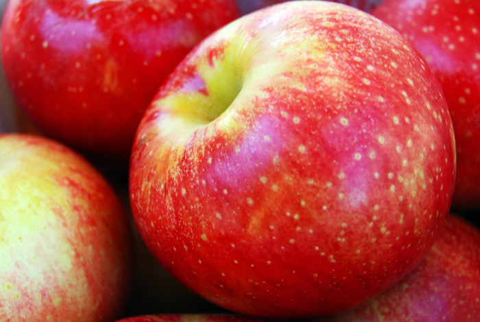 10. Minnesotans are connoisseurs of a lot of things. Among them, apples.