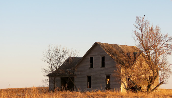 This farmhouse on Highway 183 was once probably filled with the happy sounds of a family. Today, it is little more than a refuge for local flora and fauna.
