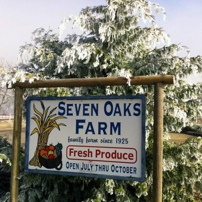 10) 7 Oaks Farm, Center Point