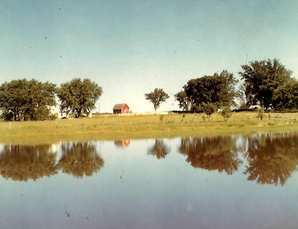 """7. The photographer's uncle called this part of his property the """"Shady Ten"""" which includes a livestock pond near Dunlap."""