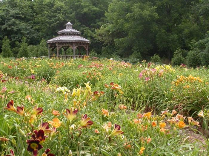 Botanical Gardens Springfield Mo Garden Ftempo