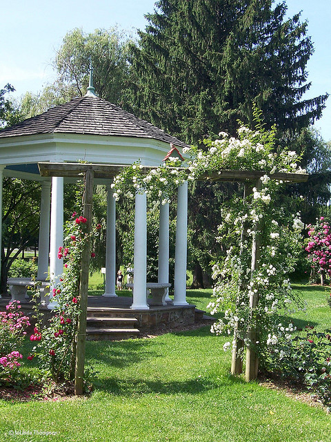 2. The Rose Gardens in Allentown
