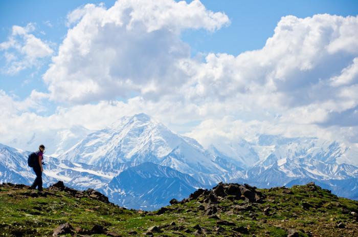 1) Denali Park Road - McKinley to Kantishna