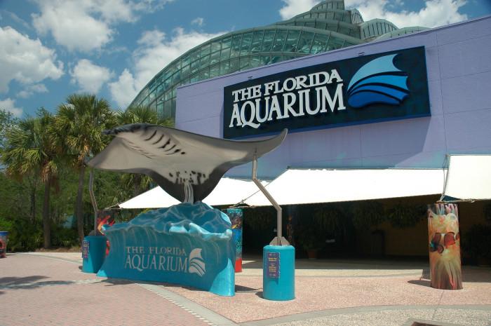 2. Florida Aquarium
