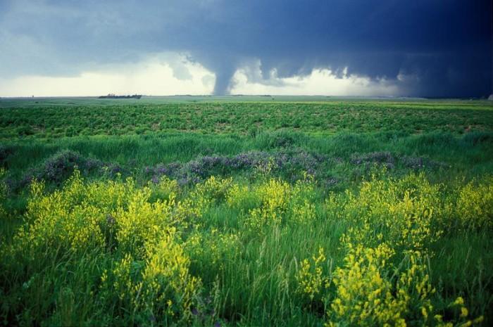 7. And spring means Tornado Season.