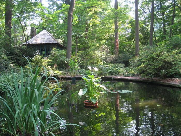 5. Arboretum of the Barnes Foundation, Merion