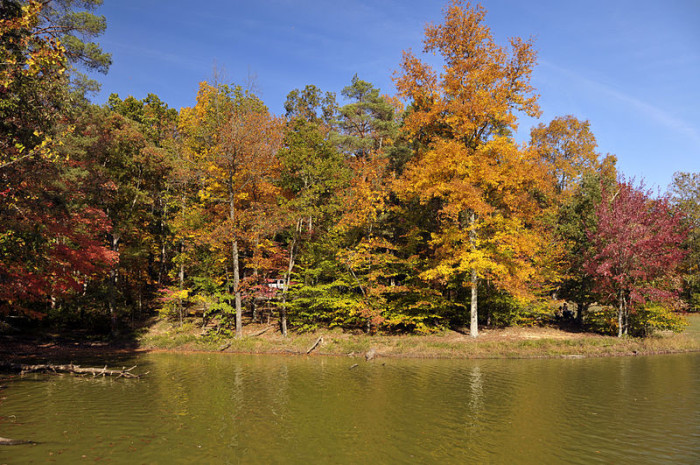 800px-Brown_County_Lake,_Indiana_(2982445255)