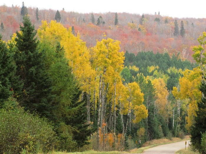 6. Wind your way through the Superior National Forest and up through Voyageurs National Park. You'll be rewarded with wonderful mountain vistas and sprawling lakes.
