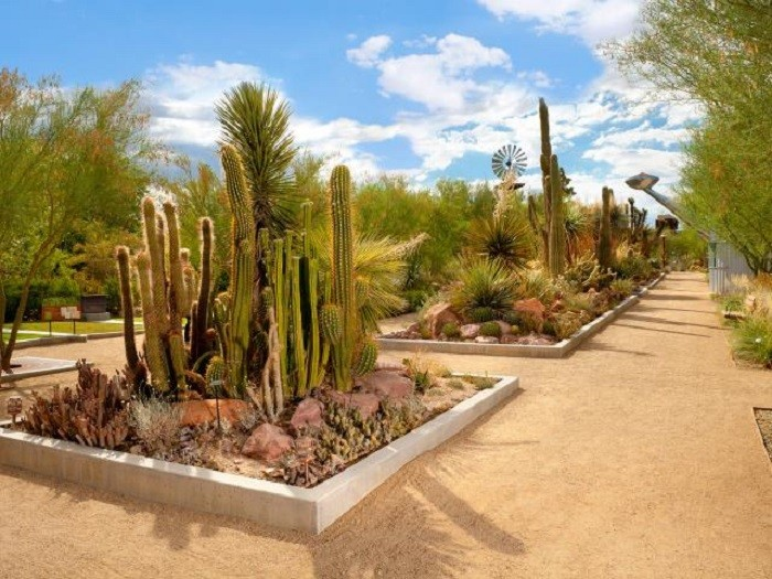 The 8 Most Beautiful Gardens In Nevada