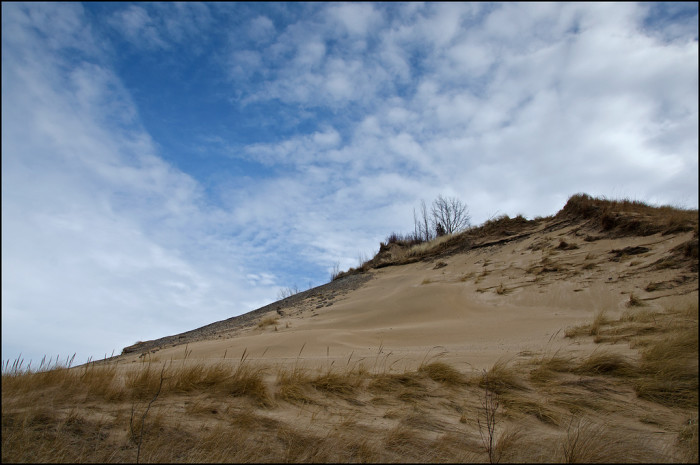 12. One last picture of a dune blowout with beautiful marram grass blowing in the wind seems like a perfect closure.
