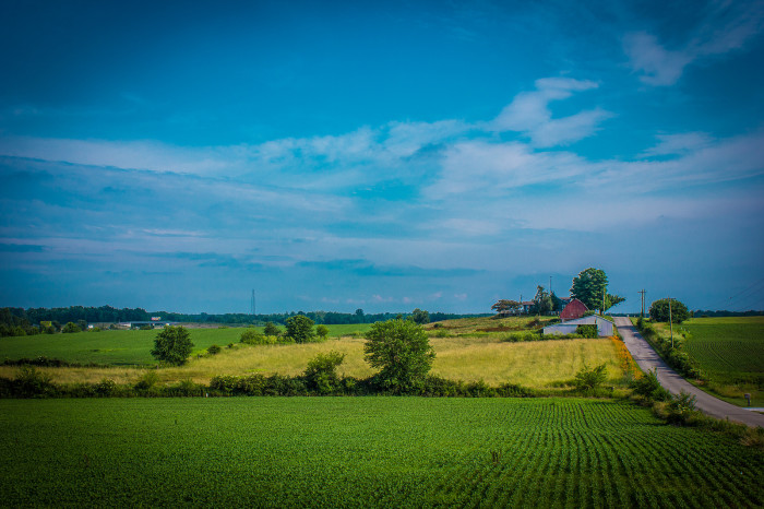 12 Charming Farms In Indiana Will Make You Love The Country