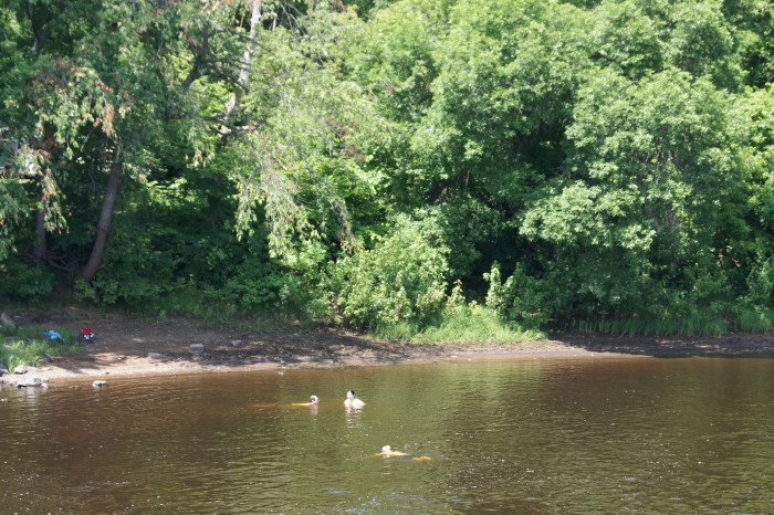 5. The St. Croix River has a few awesome spots for swimming, especially near Franconia!