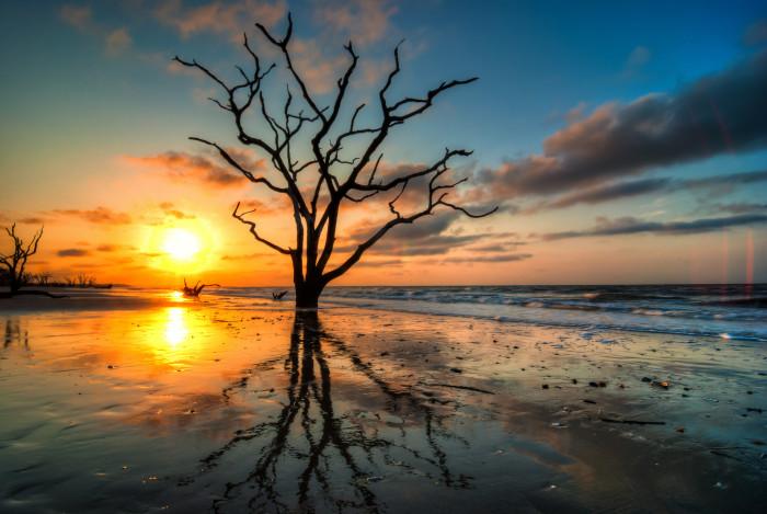 1. Botany Bay, Ediston Island