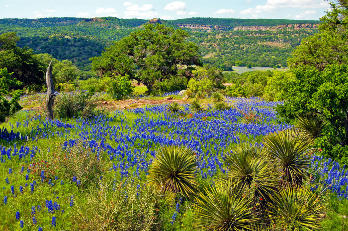 10) The Hill Country