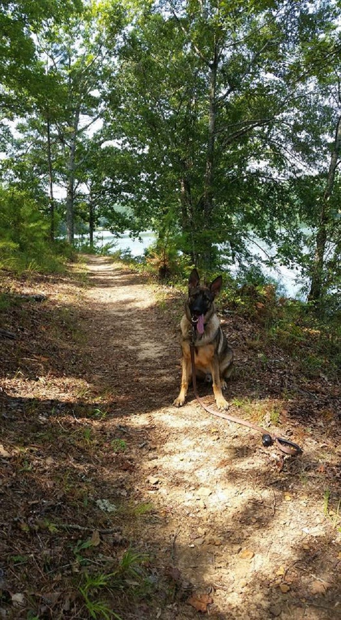 9. Lake Lurleen State Park Trails - Tuscaloosa County