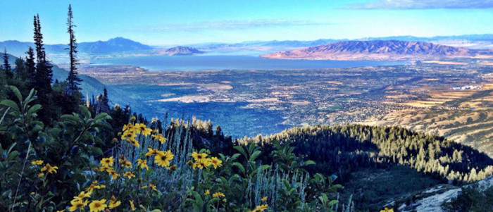 4) Alpine/Highland: Population 26,123