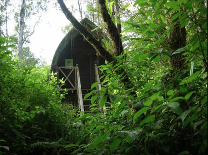 4) Bali Hut