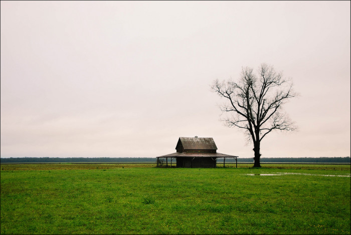 4) A lone farm in the heart of bayou country.