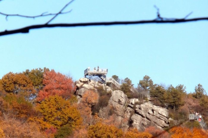 10. Birch Knob Observation Tower and Trail, Dickenson County (near Clintwood)