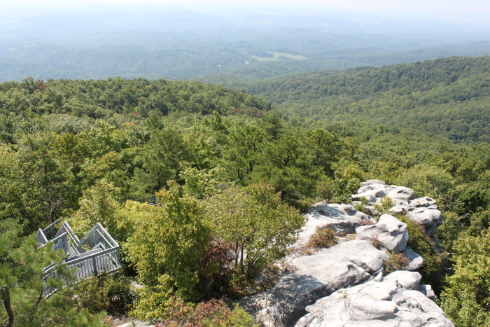 Birch Knob Observation Tower