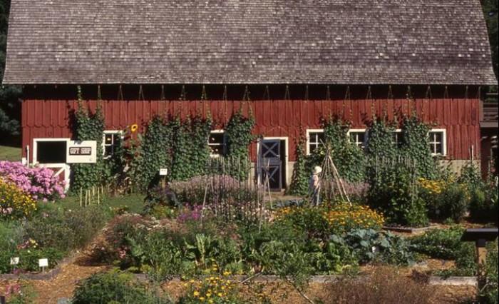 12. Blandy Experimental Farm and State Arboretum of Virginia, Boyce