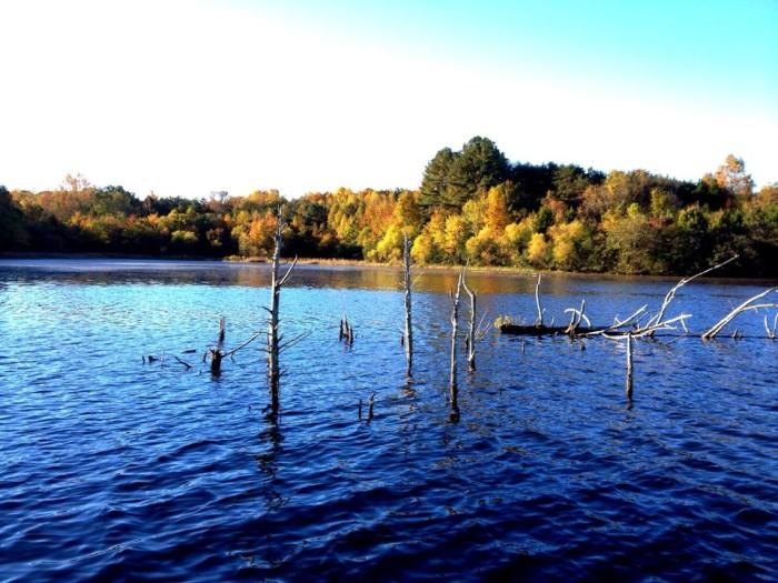 4 Briery Creek Lake, Farmville