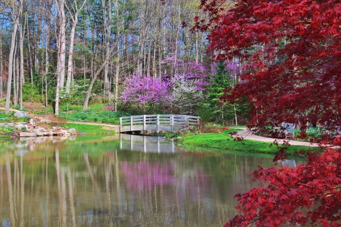 11. Edith J. Carrier Arboretum and Botanical Gardens at James Madison University,  Harrisonburg